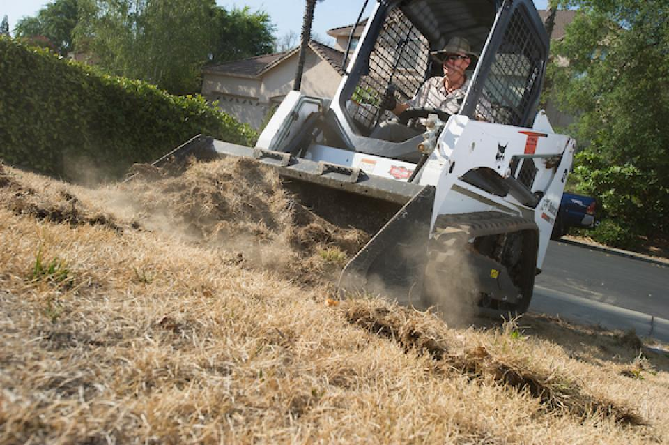 A couple in Roseville, east of Sacramento, took advantage of Roseville's Cash-for-Grass rebate program that pays homeowners to replace lawn with a landscape of drought tolerant plants, mulch, ornamental rocks and dry streambed.