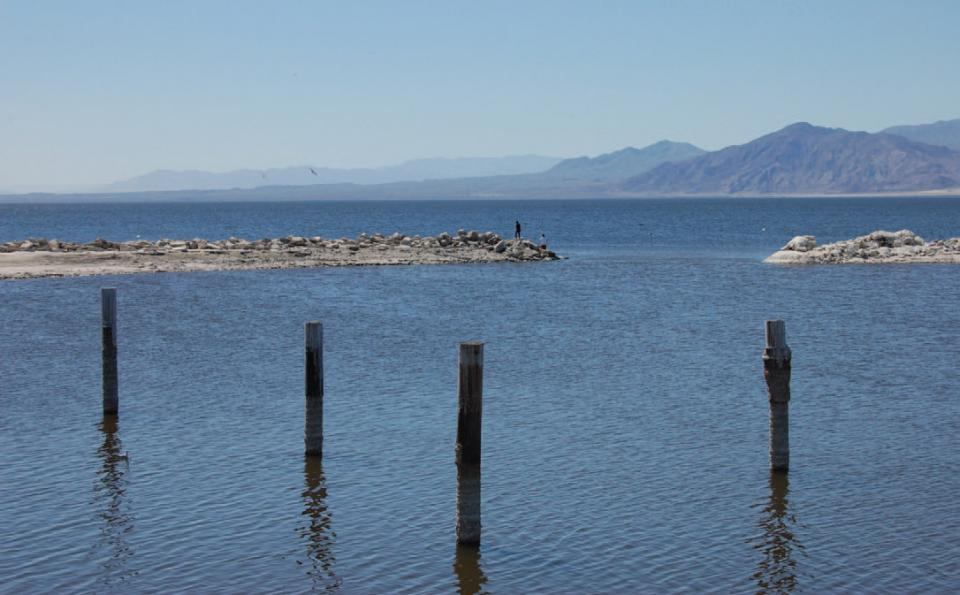 Since its formation in 1905, the Salton Sea has acted as a collection basin for a significant portion of agricultural runoff in the Imperial, Coachella and Mexicali valleys.